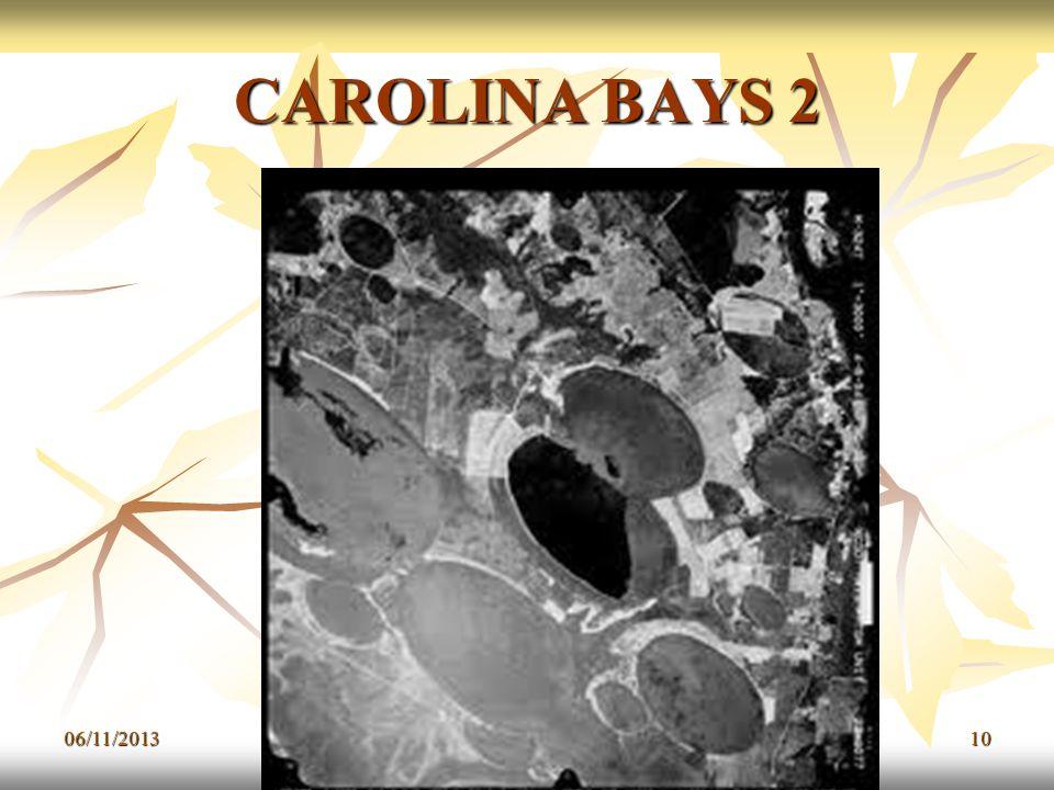 CAROLINA BAYS 2 06/11/201310