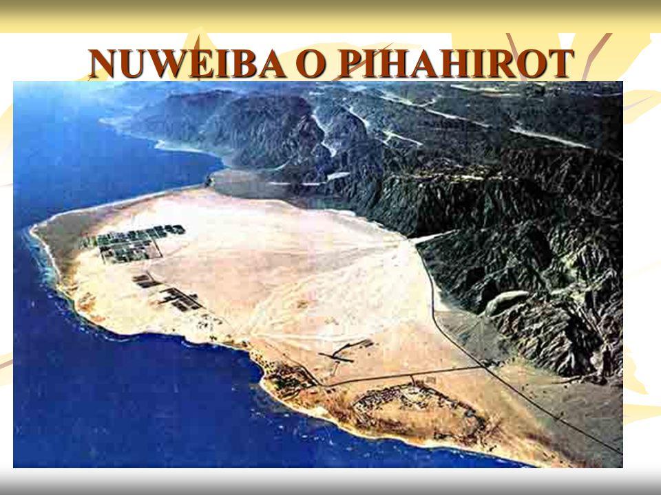 06/11/201345 NUWEIBA O PIHAHIROT