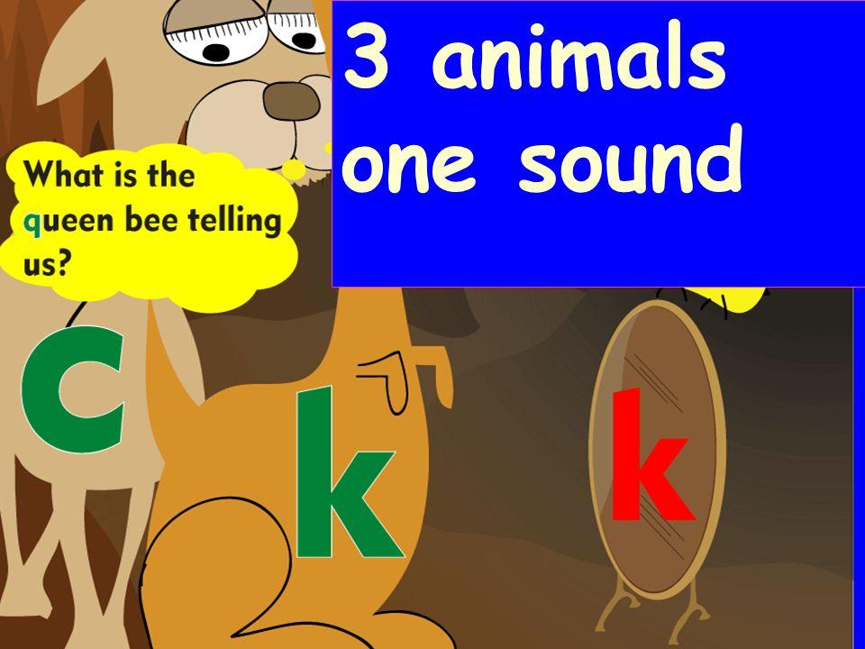 3 animals one sound