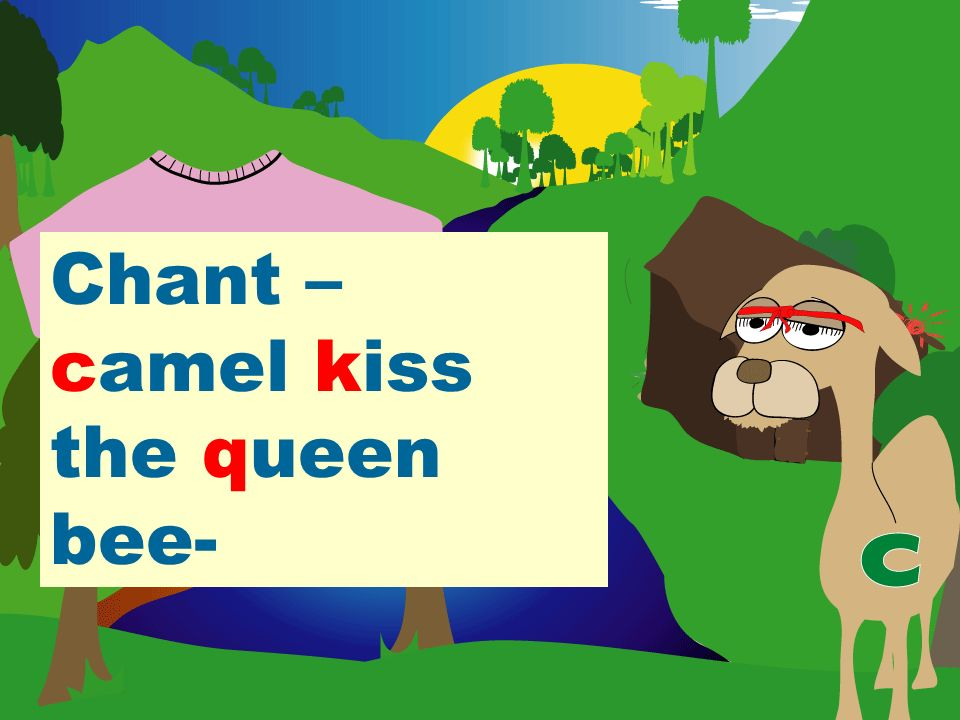 Chant – camel kiss the queen bee-