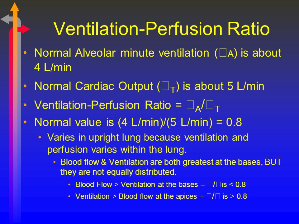 Ventilation-Perfusion Ratio Normal Alveolar minute ventilation ( A ) is about 4 L/min Normal Cardiac Output ( T ) is about 5 L/min Ventilation-Perfusi