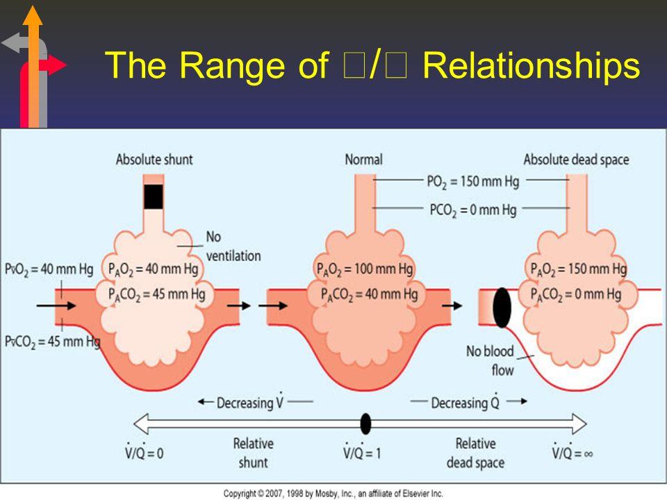 The Range of / Relationships