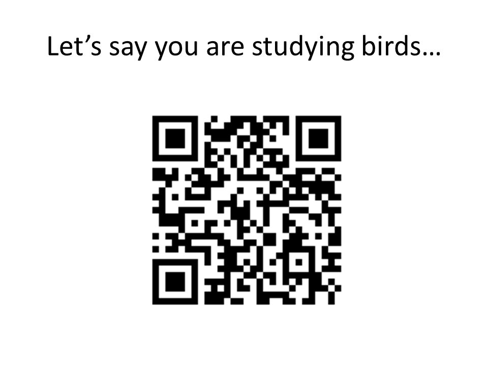 Lets say you are studying birds…