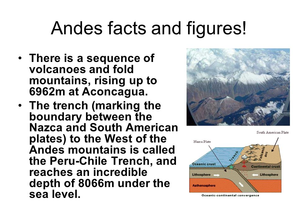 Andes facts and figures! There is a sequence of volcanoes and fold mountains, rising up to 6962m at Aconcagua. The trench (marking the boundary betwee
