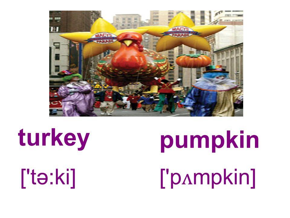 turkey pumpkin [ tə:ki] [ p ʌ mpkin]