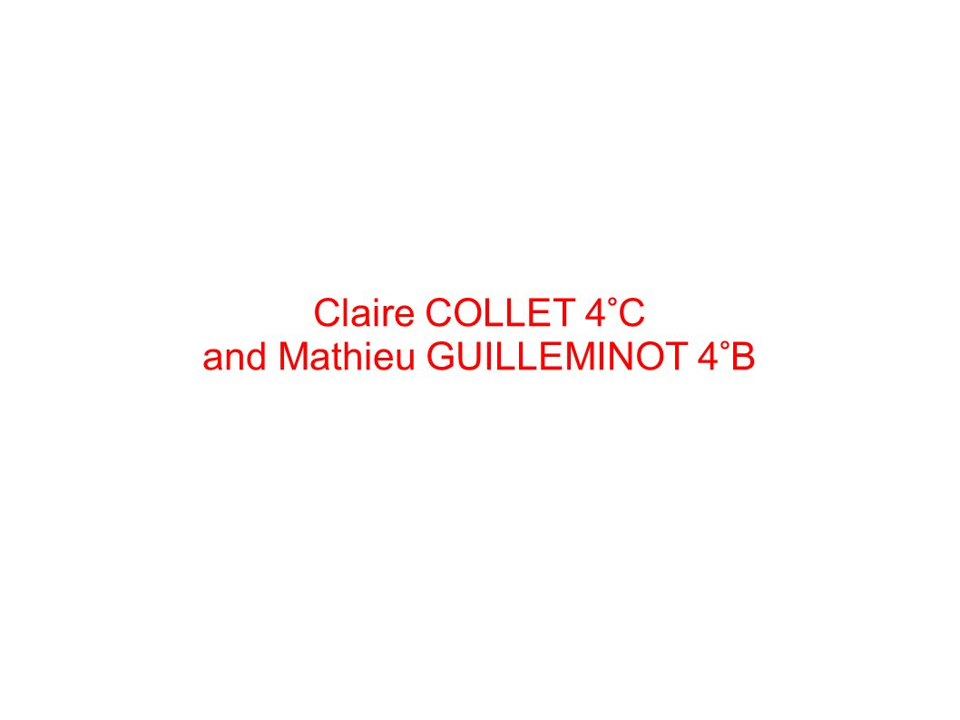 Claire COLLET 4°C and Mathieu GUILLEMINOT 4°B