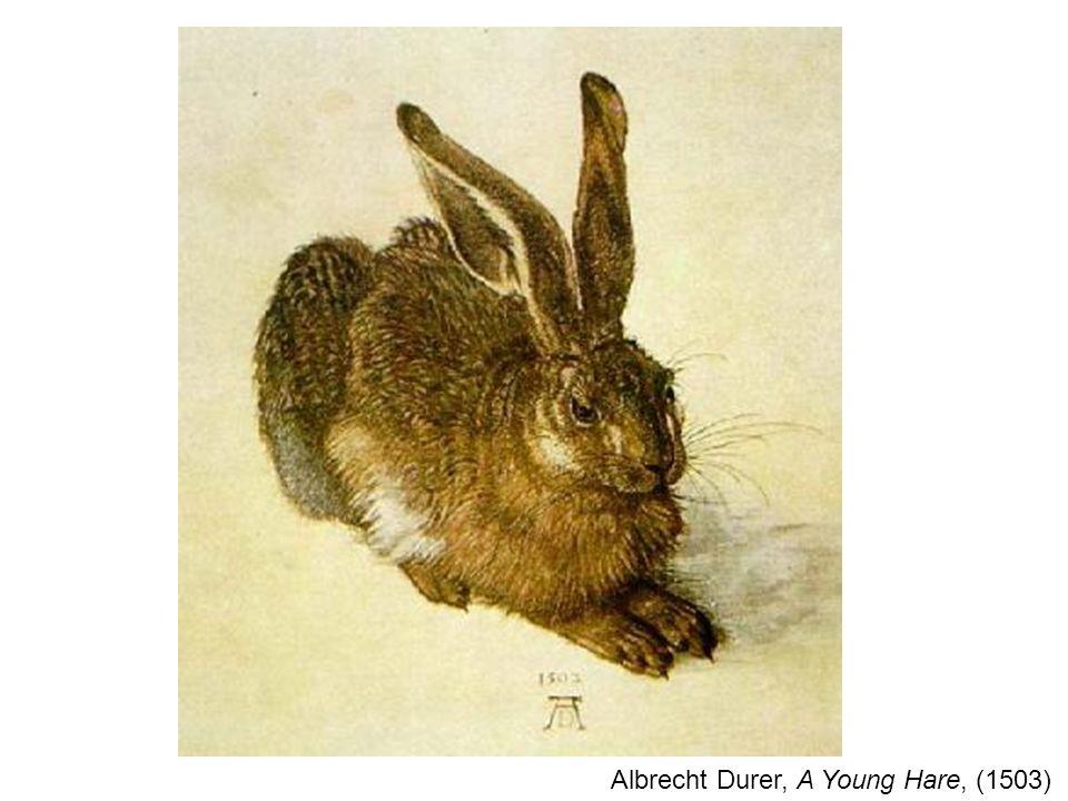 Albrecht Durer, A Young Hare, (1503)