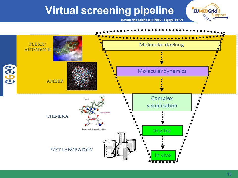 Institut des Grilles du CNRS – Equipe PCSV FLEXX/ AUTODOCK AMBER CHIMERA WET LABORATORY Molecular docking Molecular dynamics Complex visualization in