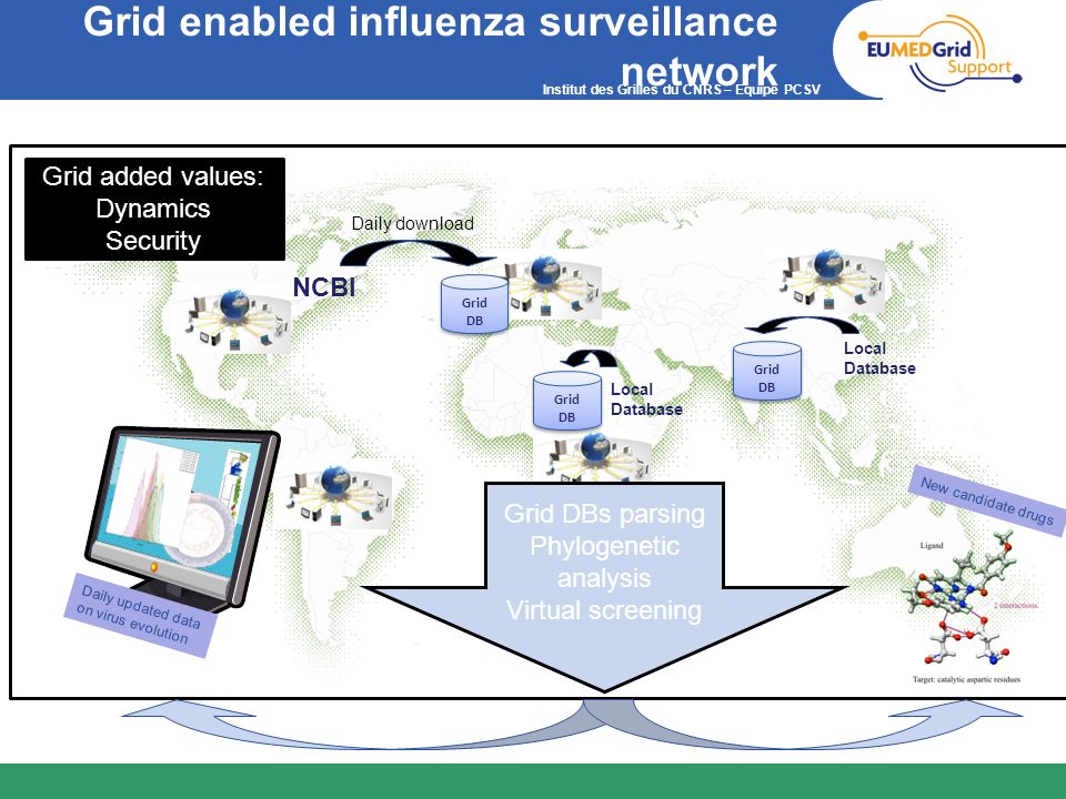 Institut des Grilles du CNRS – Equipe PCSV Grid enabled influenza surveillance network NCBI Daily download Grid DB Daily updated data on virus evoluti