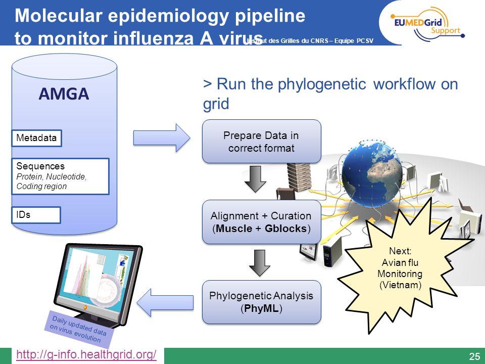 Institut des Grilles du CNRS – Equipe PCSV Molecular epidemiology pipeline to monitor influenza A virus 25 AMGA Metadata Sequences Protein, Nucleotide
