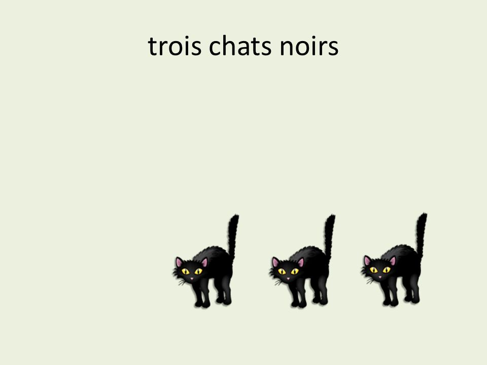 trois chats noirs