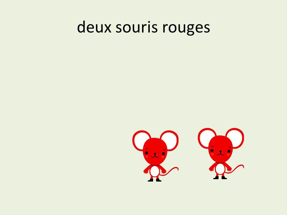 deux souris rouges
