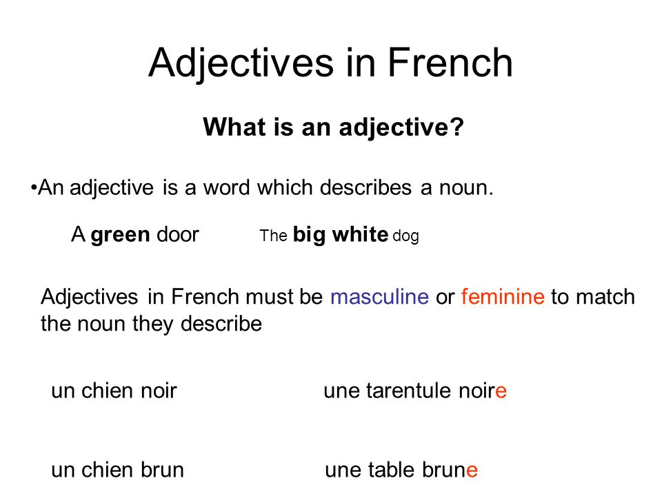 Adjectives in French What is an adjective? An adjective is a word which describes a noun. A green door The big white dog Adjectives in French must be