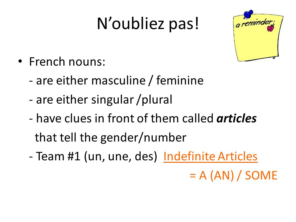 Noubliez pas! French nouns: - are either masculine / feminine - are either singular /plural - have clues in front of them called articles that tell th