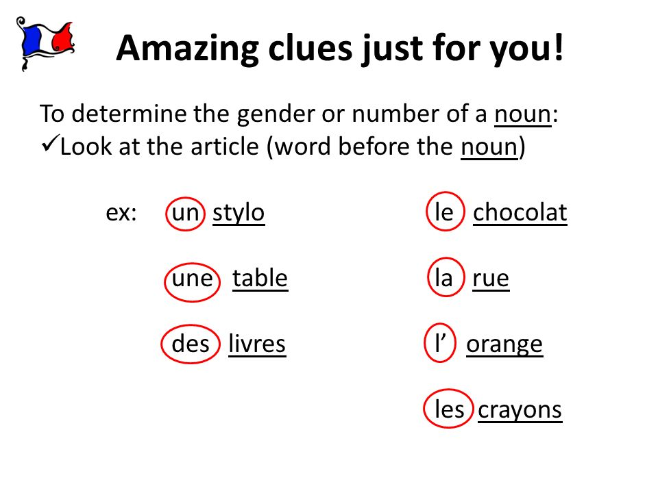 Definite Article plural the les tables les oranges (the oranges) (the tables) tables oranges