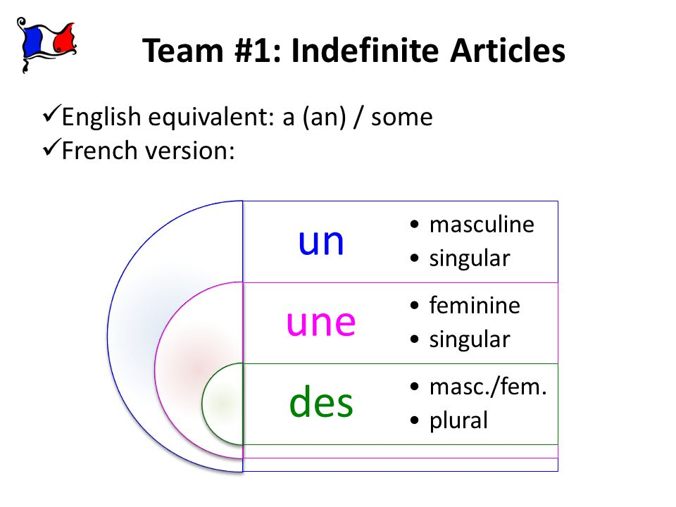 Team #1: Indefinite Articles English equivalent: a (an) / some French version: un une des masculine singular feminine singular masc./fem. plural