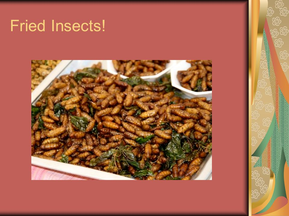Fried Insects!
