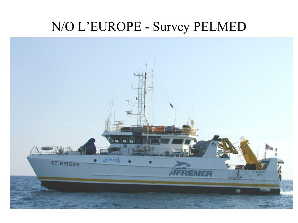 N/O LEUROPE - Survey PELMED