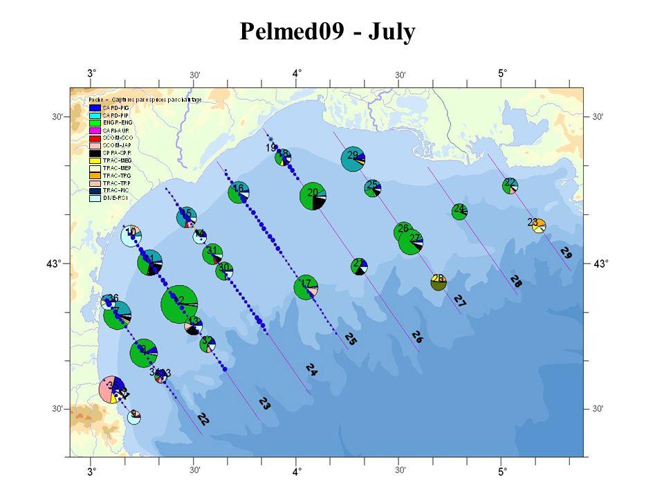 Pelmed09 - July