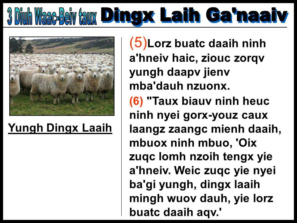 Yungh Dingx Laaih (5) Lorz buatc daaih ninh a'hneiv haic, ziouc zorqv yungh daapv jienv mba'dauh nzuonx. (6)