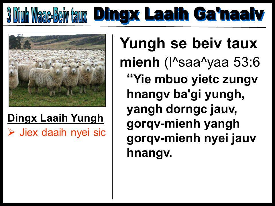 Dingx Laaih Yungh Jiex daaih nyei sic Yungh se beiv taux mienh (I^saa^yaa 53:6 Yie mbuo yietc zungv hnangv ba'gi yungh, yangh dorngc jauv, gorqv-mienh