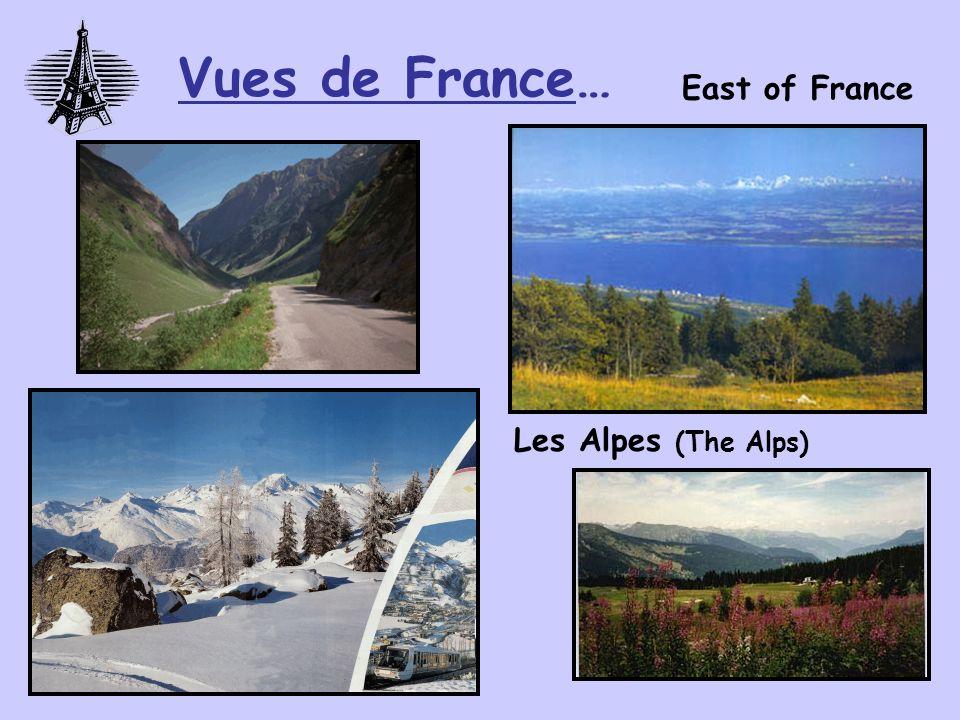 Famous sport event: Le Tour de France