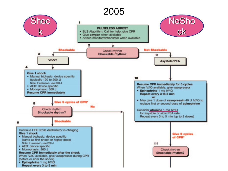 2005 Shoc k NoSho ck
