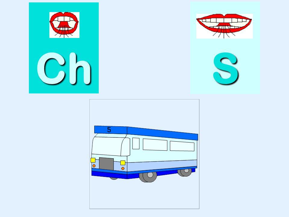 brosse Ch SSSS