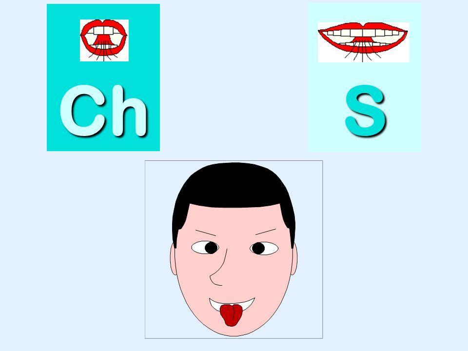 flèche Ch SSSS