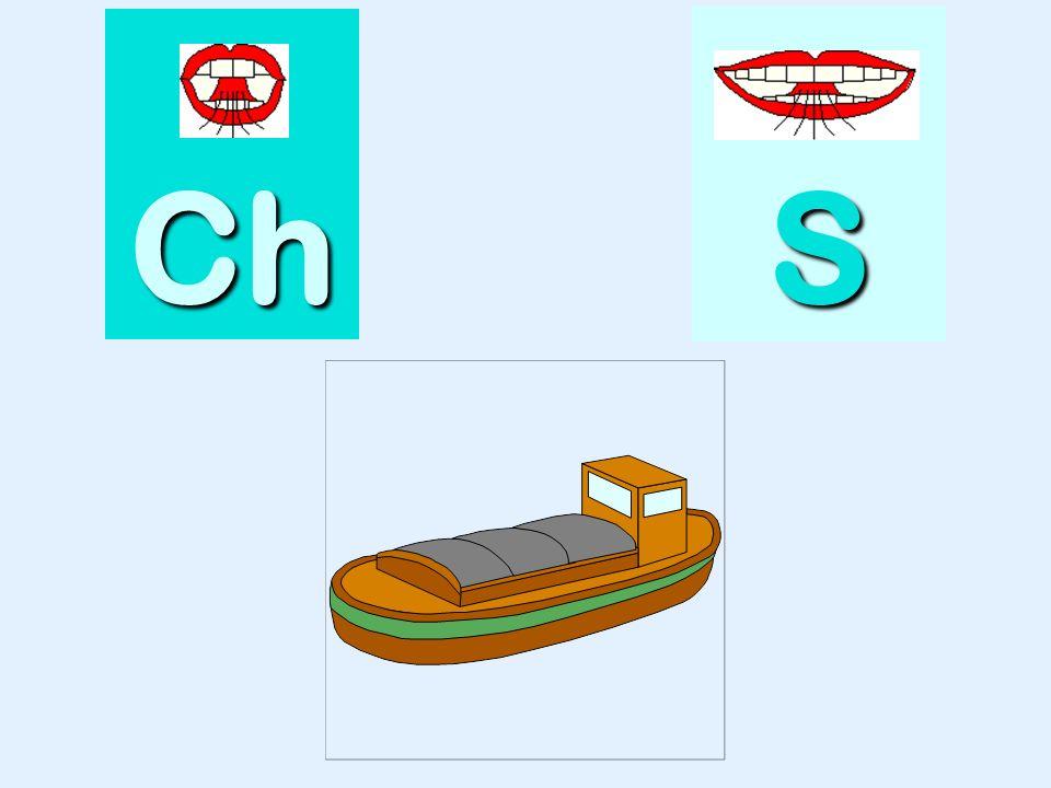 tasse Ch SSSS