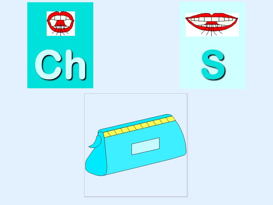 tresse Ch SSSS