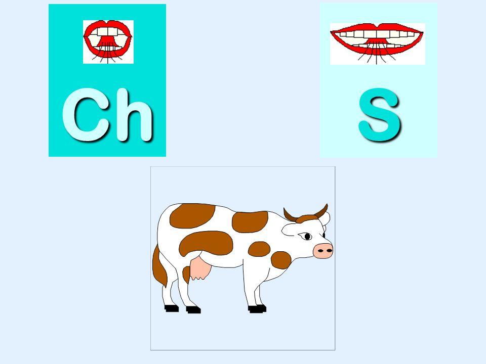 pouce Ch SSSS