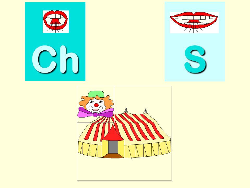 chameau Ch SSSS