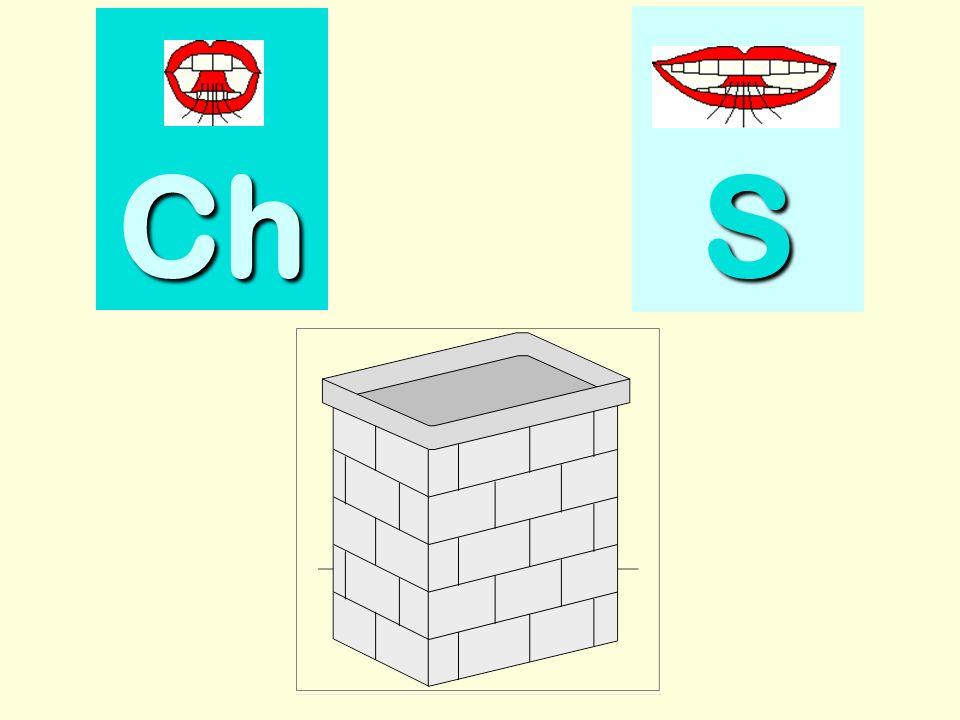 citron Ch SSSS