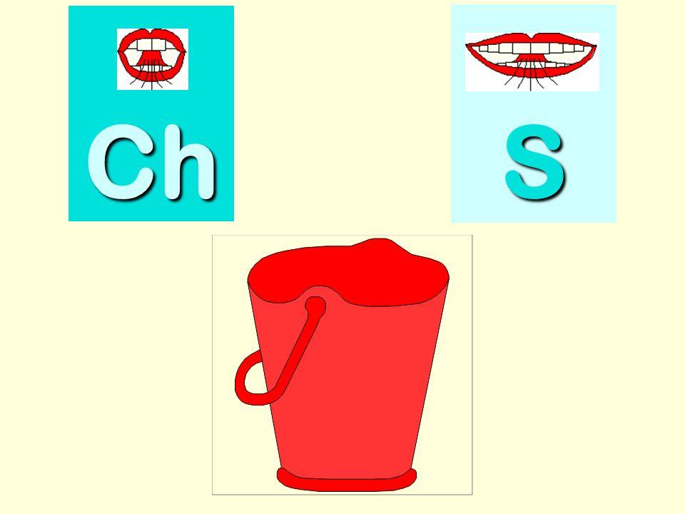 chouette Ch SSSS