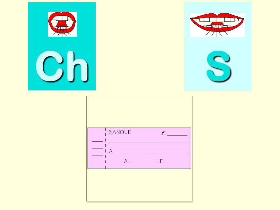 sauterelle Ch SSSS