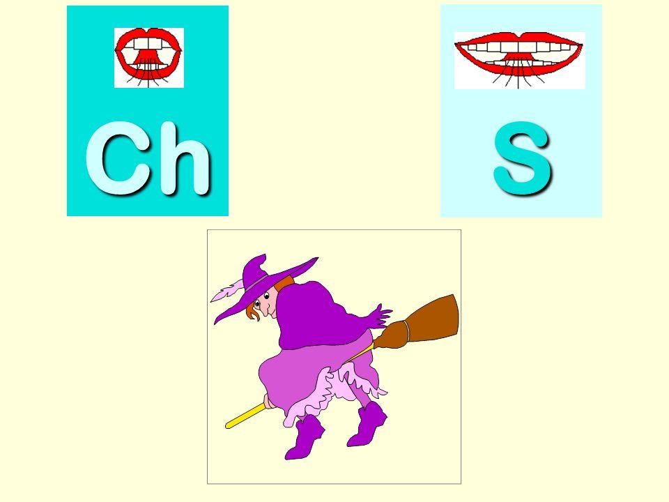 chiffon Ch SSSS