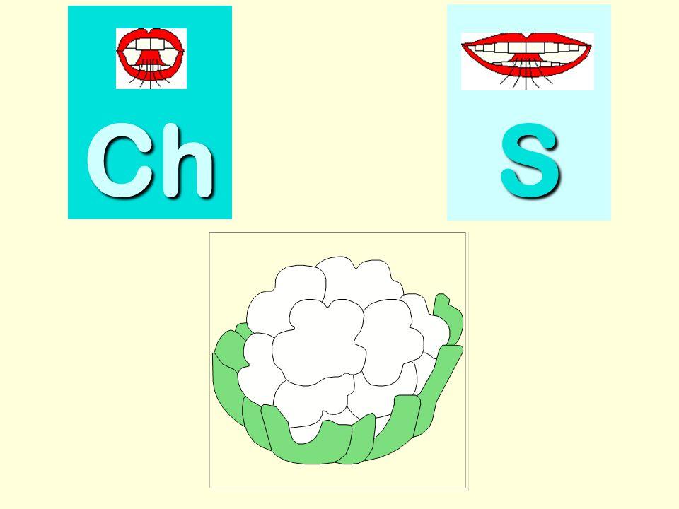 sirop Ch SSSS