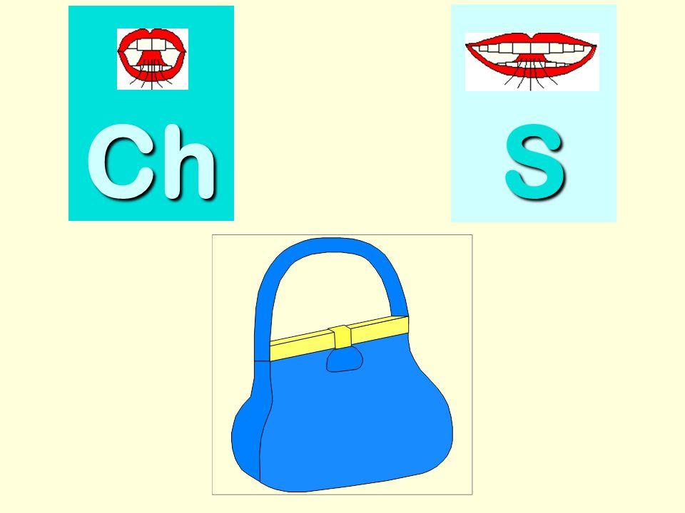 citrouille Ch SSSS