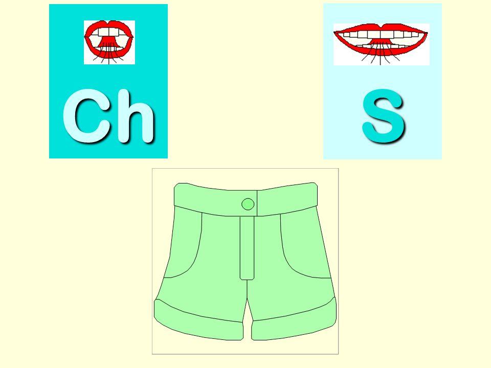 sapin Ch SSSS
