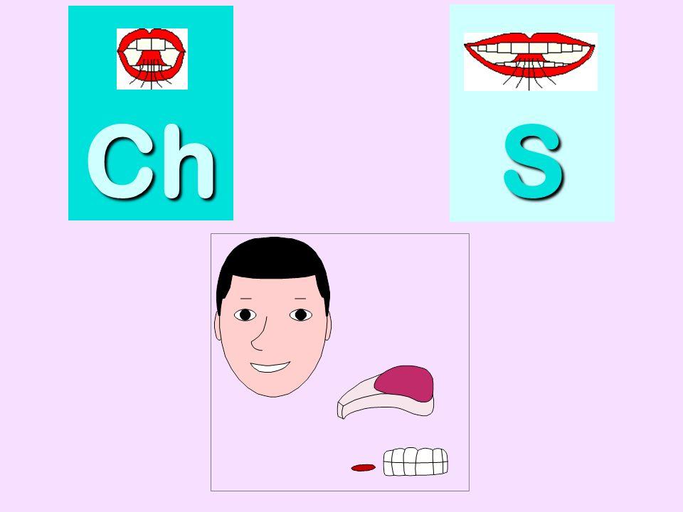 berceau Ch SSSS