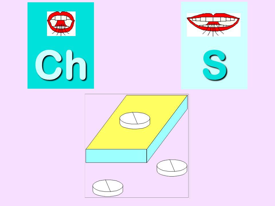 cachalot Ch SSSS