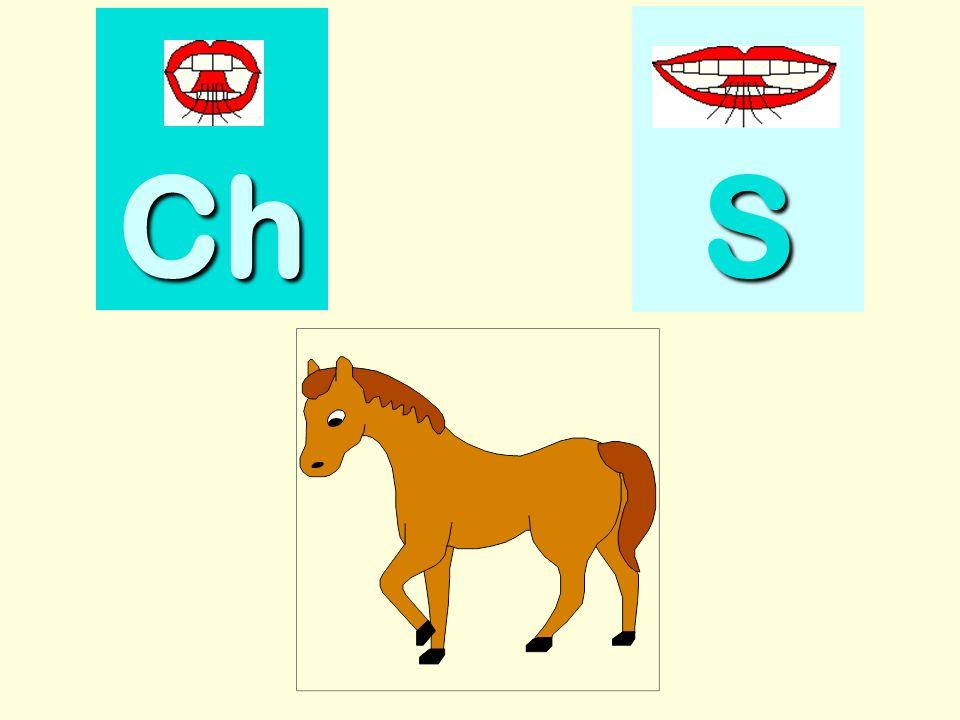 ceinture Ch SSSS