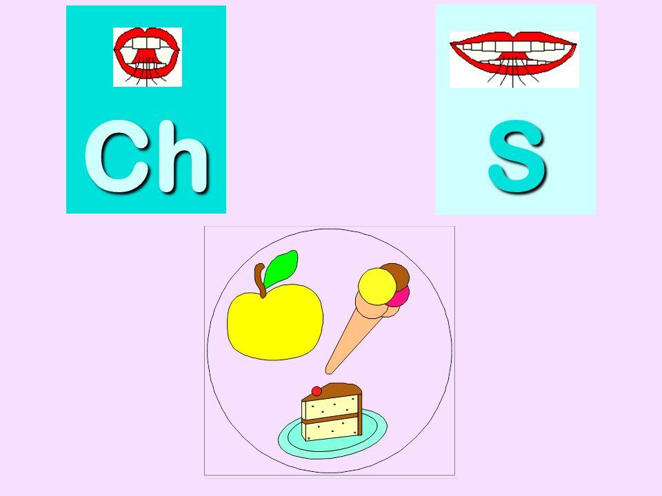cochon Ch SSSS