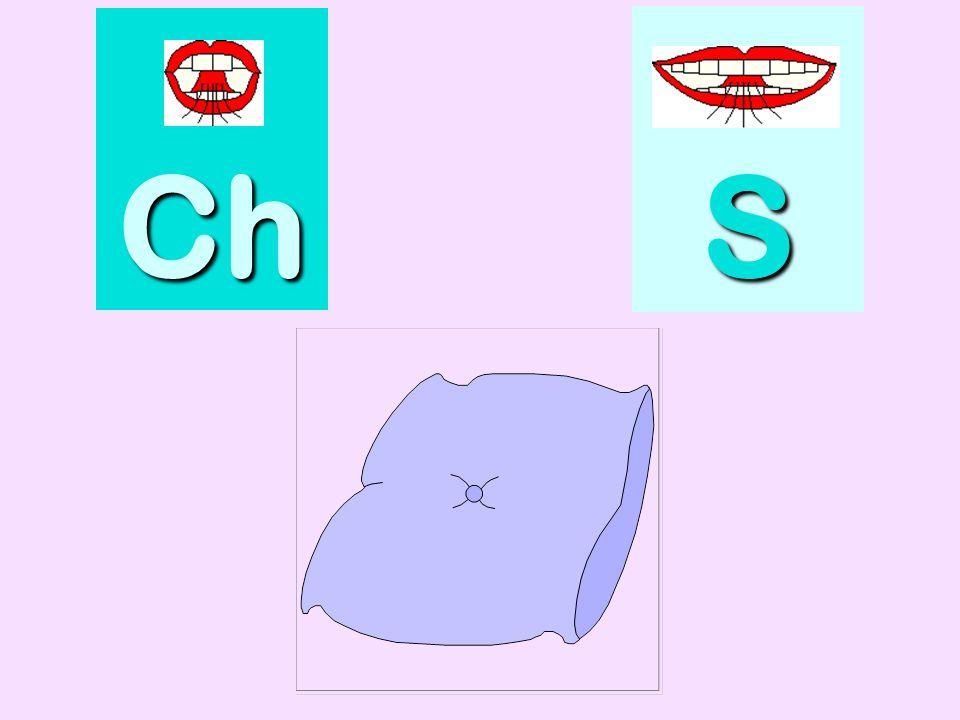 cornichon Ch SSSS