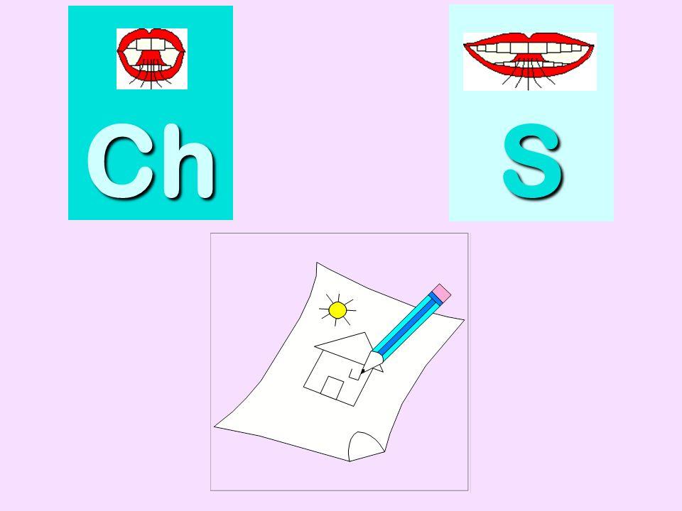bouchon Ch SSSS