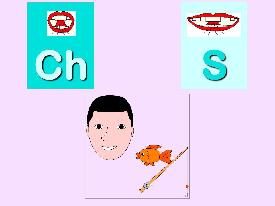 Pare choc Ch SSSS
