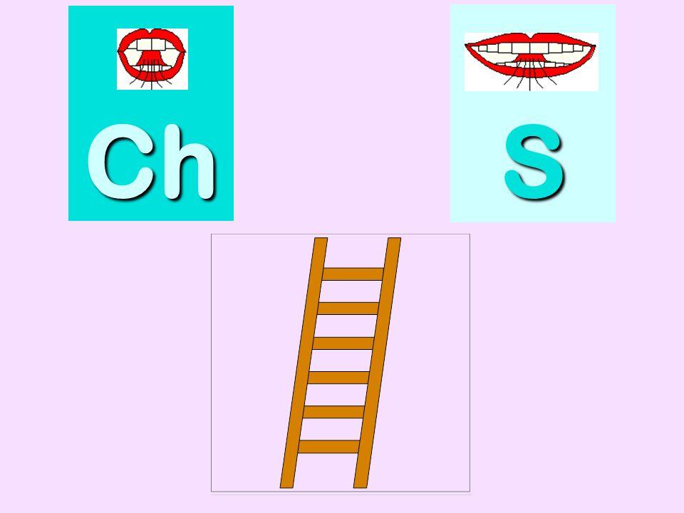 pharmacie Ch SSSS
