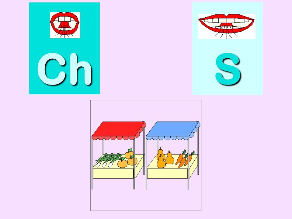 piscine Ch SSSS