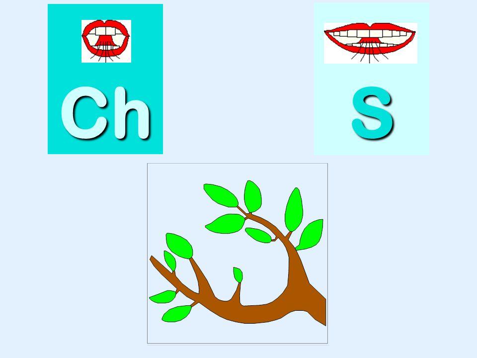 classe Ch SSSS